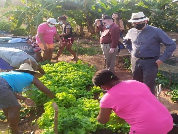 No Chão do Sertão o Verde na Caatinga!